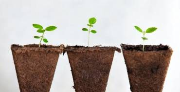 Novosti kod proizvoda osiguranja života s investicijskim fondovima Grawe Invest
